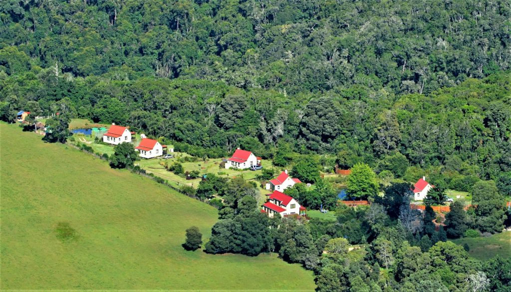 arial view of forest edge nature lovers retreat on the edge of the forest